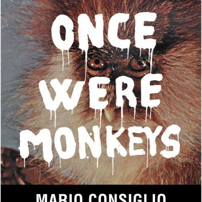 PERUGIA · once were monkeys