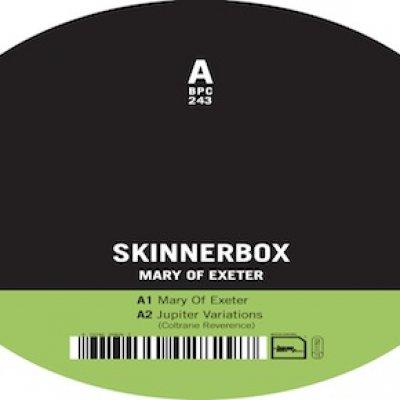 BERLIN · new album from SKINNERBOX