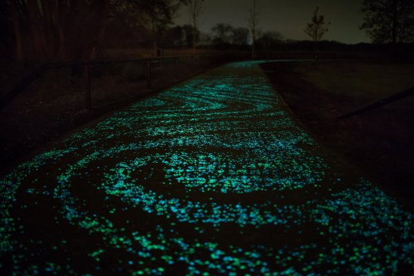 Van Gogh Path opened in Neunen, the Netherlands in November, 2014, to the delight of cyclists and the local community. Photo: Courtesy of Studio Roosegaarde.
