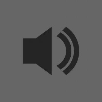 WHite noise orchestra live